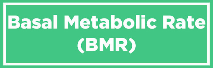Calculating your basal metabolic rate
