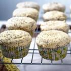 poppy seed keto muffins