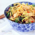low carb pork lo mein dinner recipe