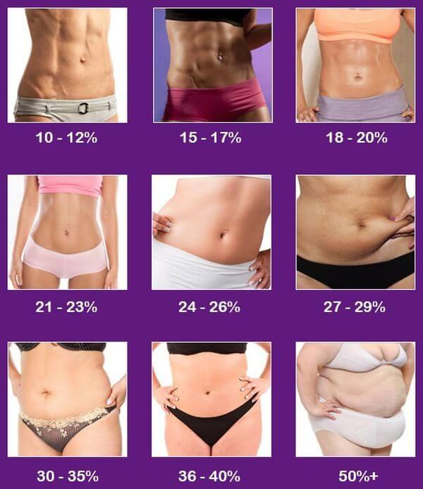 body fat percentages women