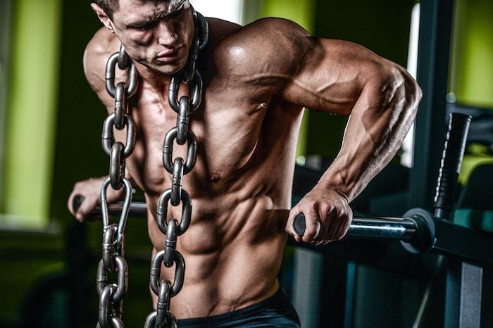 chest training principles