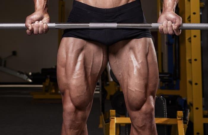 muscular quads