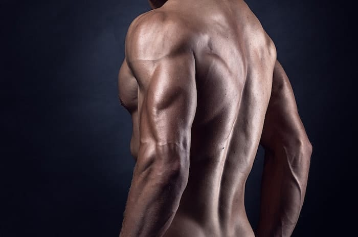 best tricep workout routine