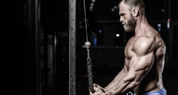 muscle hypertrophy training